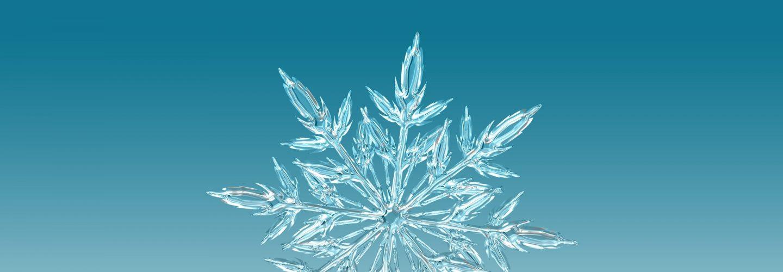 Snowflake at a glance!